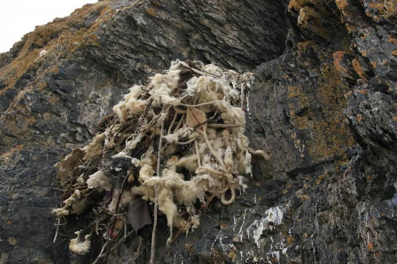 Тибет. Гнездо йети. Вход в Ергор (фото)