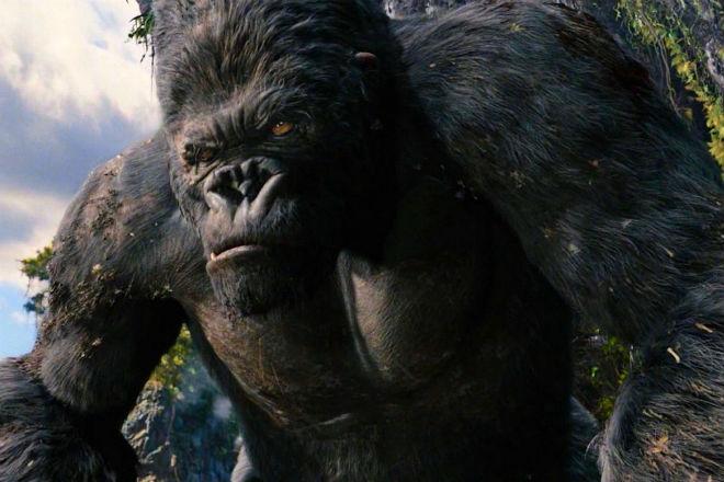 Сильнейший атлет в мире вышел против гориллы