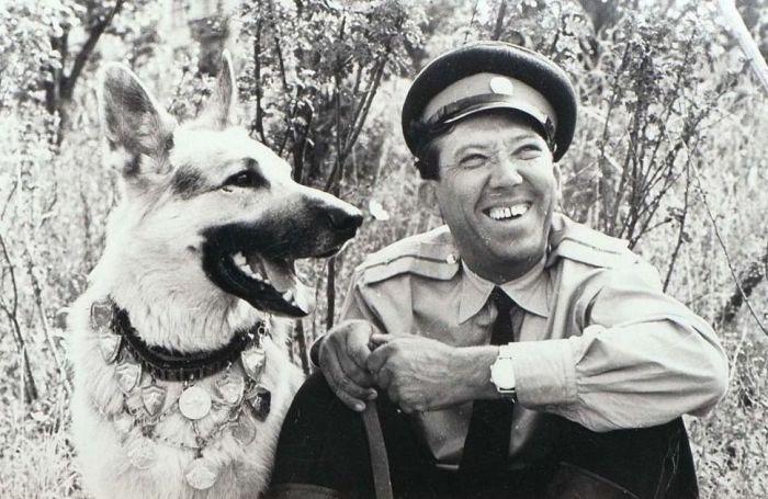 Как снимали фильм «Ко мне, Мухтар!»: Из-за чего Лев Дуров остался без штанов и как Юрий Никулин подружился с собаками