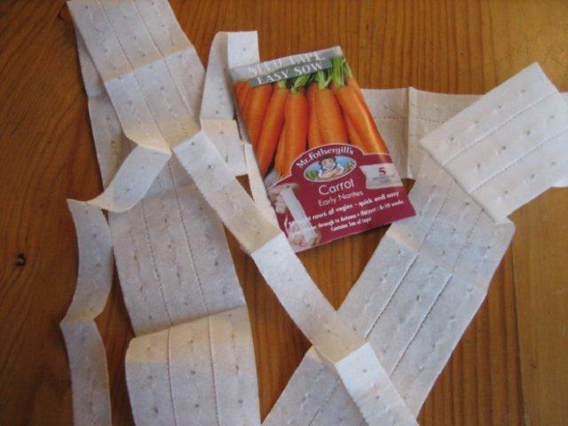 5 способов посеять морковь: проверенные методы