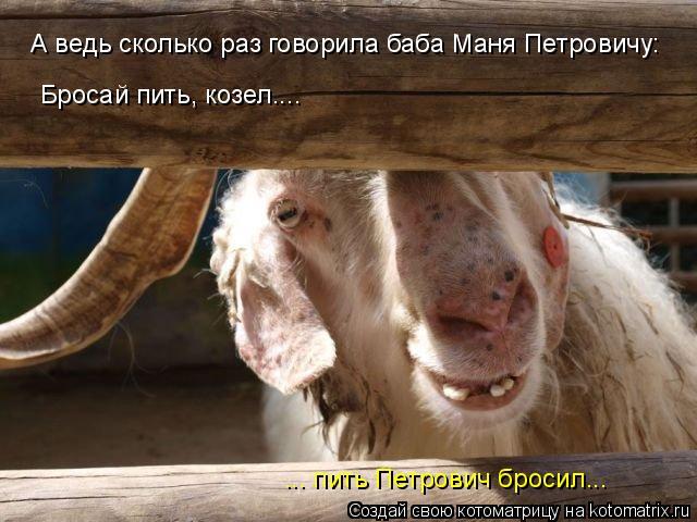 Котоматрица: А ведь сколько раз говорила баба Маня Петровичу: Бросай пить, козел.... ... пить Петрович бросил...