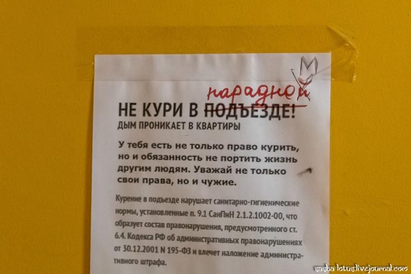 """""""Ромашка"""" - самая красивая парадная Санкт-Петербурга Парадная, факты, фото"""