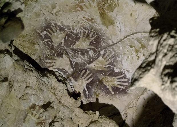 Древнейшее в мире изображение животного найдено в пещере на острове Борнео