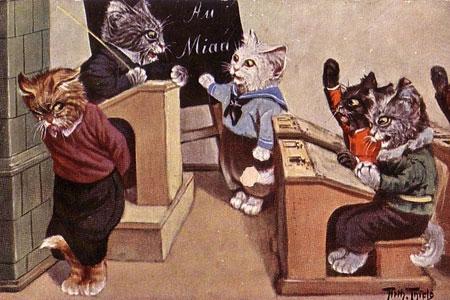 «Нельзя!»: как наказывать котов, чтобы им за это ничего не было
