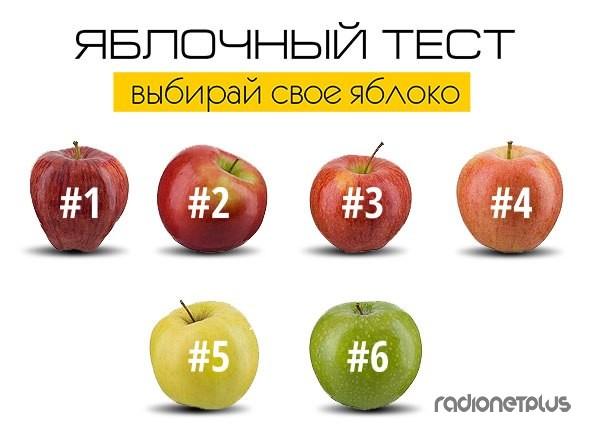 Выбери свое яблоко!