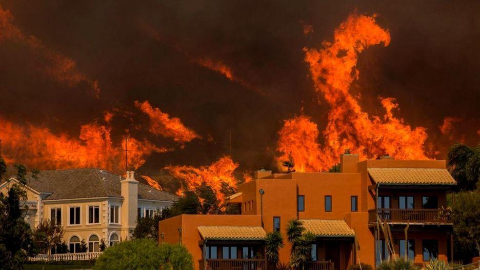 Пять мифов о лесных пожарах