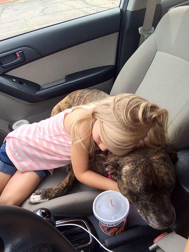 Эта собака еще не слышала слов трогательнее...