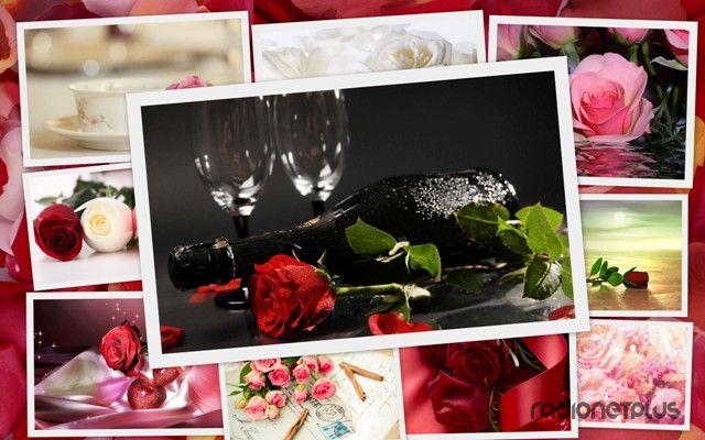 Розы на рабочий стол
