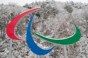 Атлеты из КНДР и Южной Кореи не пройдут вместе на открытии Паралимпиады