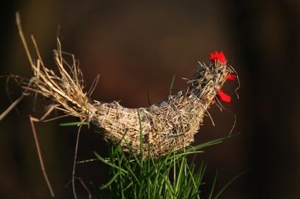 поделки своими руками для сада и огорода