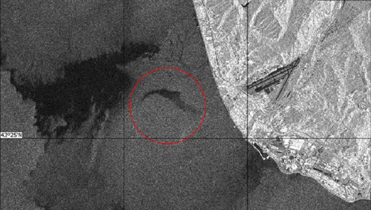 В Сети опубликовали спутниковый снимок места крушения ТУ-154