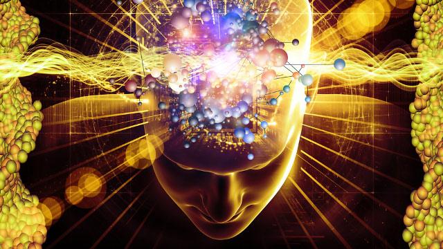 Профессор Татьяна Черниговская о тайнах и сюрпризах нашего  мозга