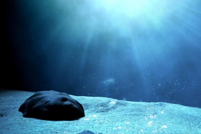 Обнаружено существо, у которого есть голова и нет тела