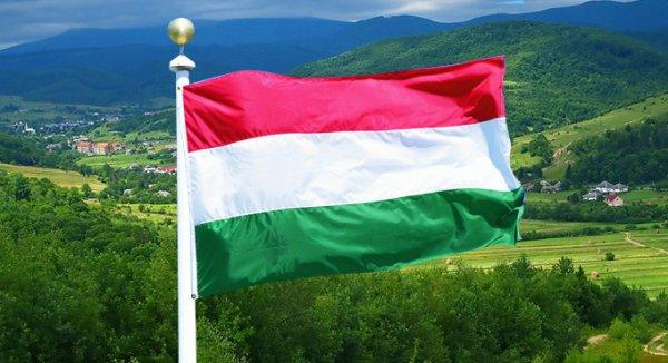 Украина затягивает венгерскую петлю у себя на шее.  Мораторий – для стада. Украинскую землю уже расписали