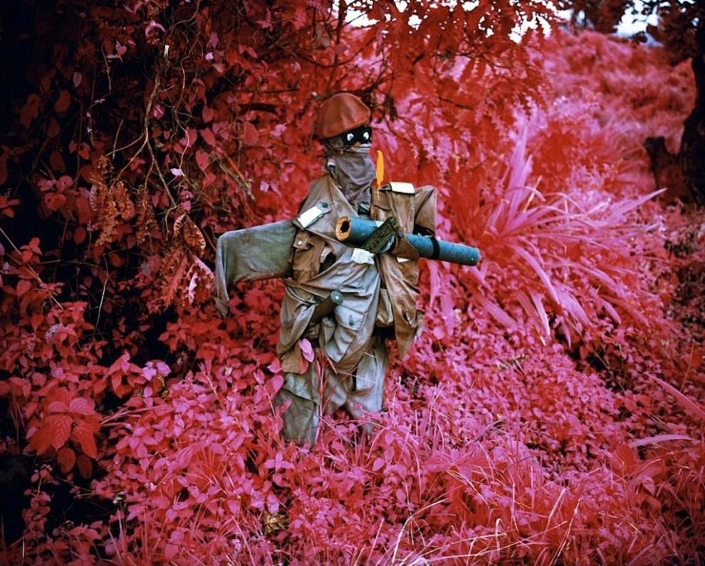 Purpurnyj-tsvet-vojny-16