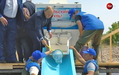 Путин выпустил мальков омуля в Байкал. Видео