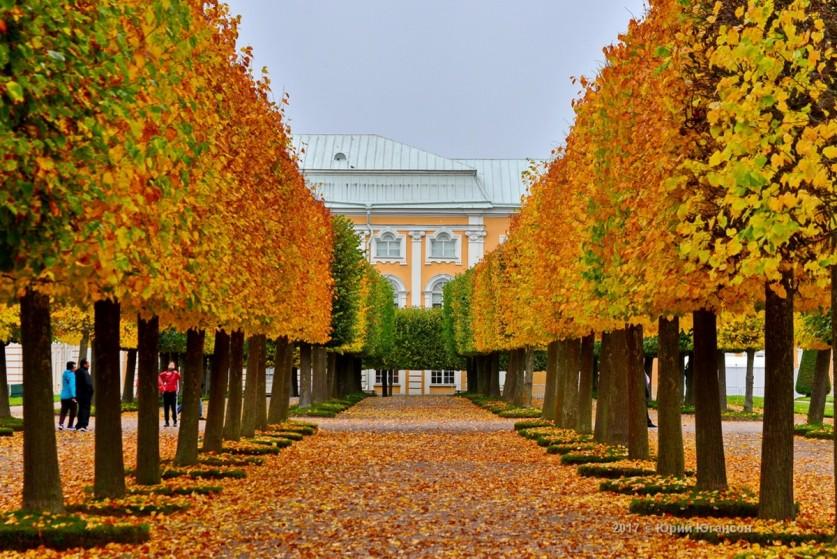 Осенний Петергоф и Царское село в фотографиях Юрия Югансона