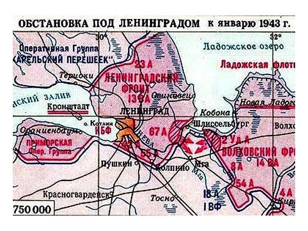 План наступления под Ленинградом. Блокада Ленинграда, ВОВ 1941-1945, история