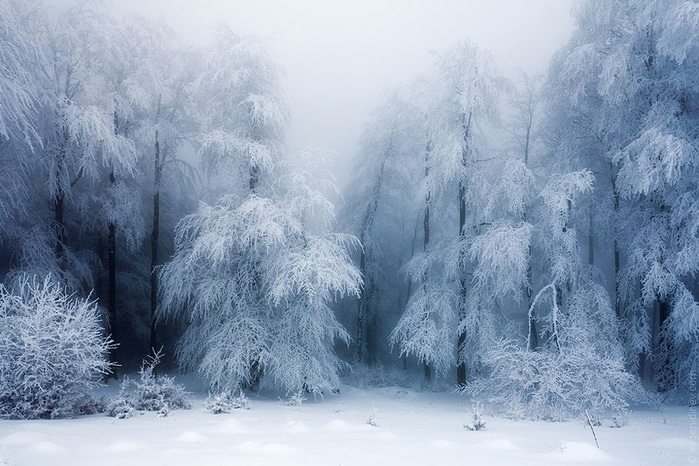 Зимний пейзаж. Синэри винта. PR