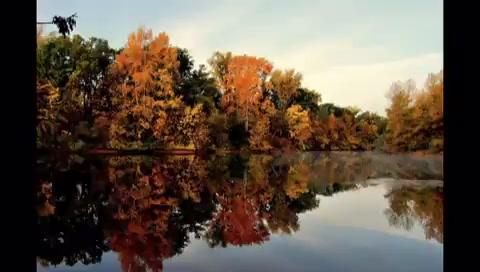 Музыка любви. Ernesto Cortazar. Autumn Rose. – Смотреть видео онлайн в Моем Мире.