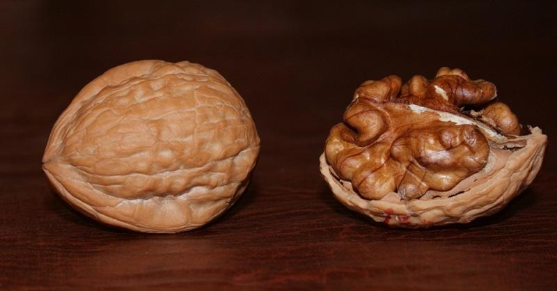 Грецкий орех для лечения грибка ногтей