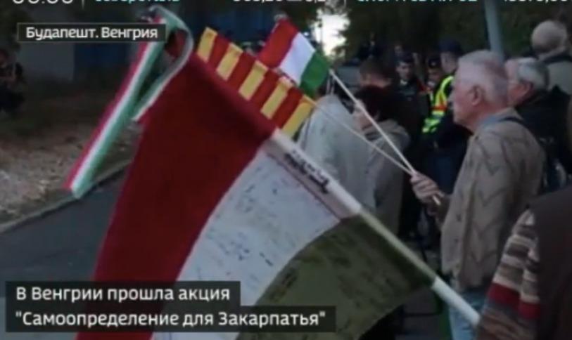 Началось: в Будапеште прошла акция с требованием самоопределения для Закарпатья
