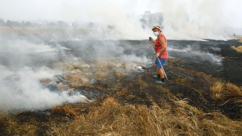 Убирайтесь в свою Америку: На Кубани разгромили лагерь волонтеров «Гринпис»