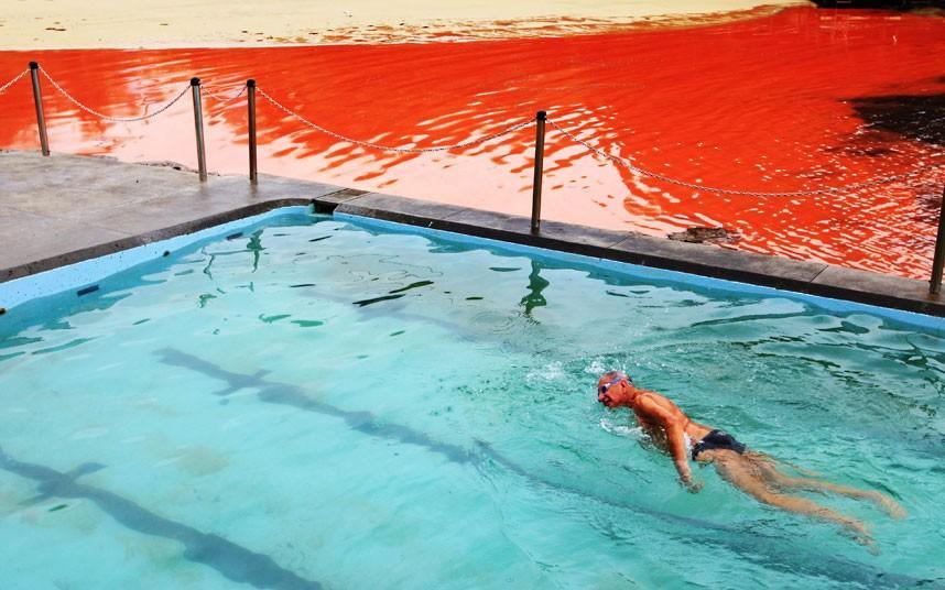 krovavoaliokean 9 Вода на пляжах Австралии окрасилась кроваво красным, напугав отдыхающих