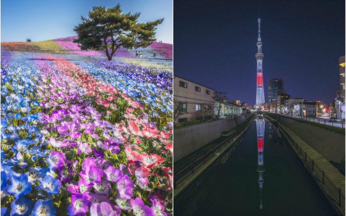 Красота Японии