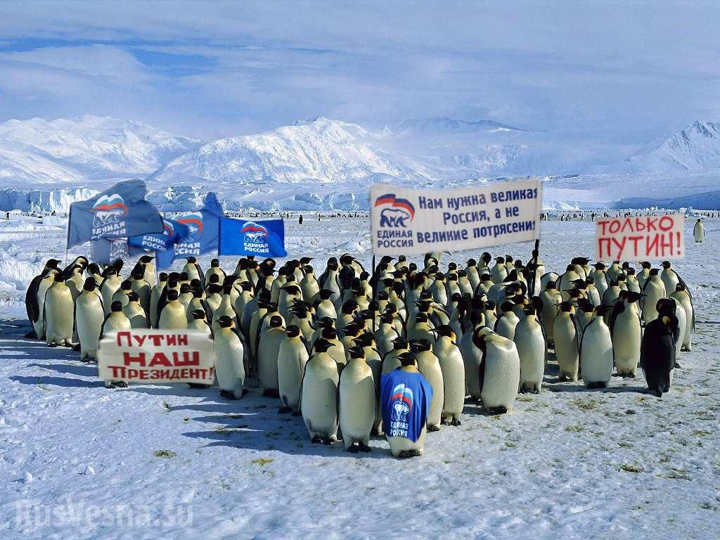 Шокирующий опрос в Киеве: Россия отобрала у Украины Аляску