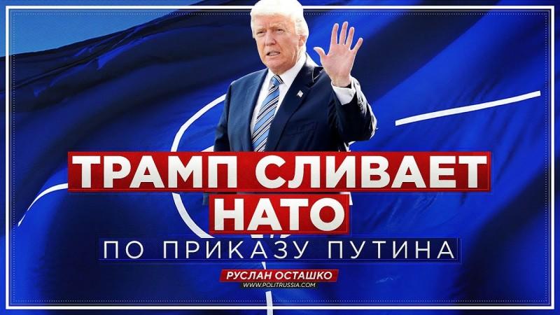 Трамп сливает НАТО по приказу Путина