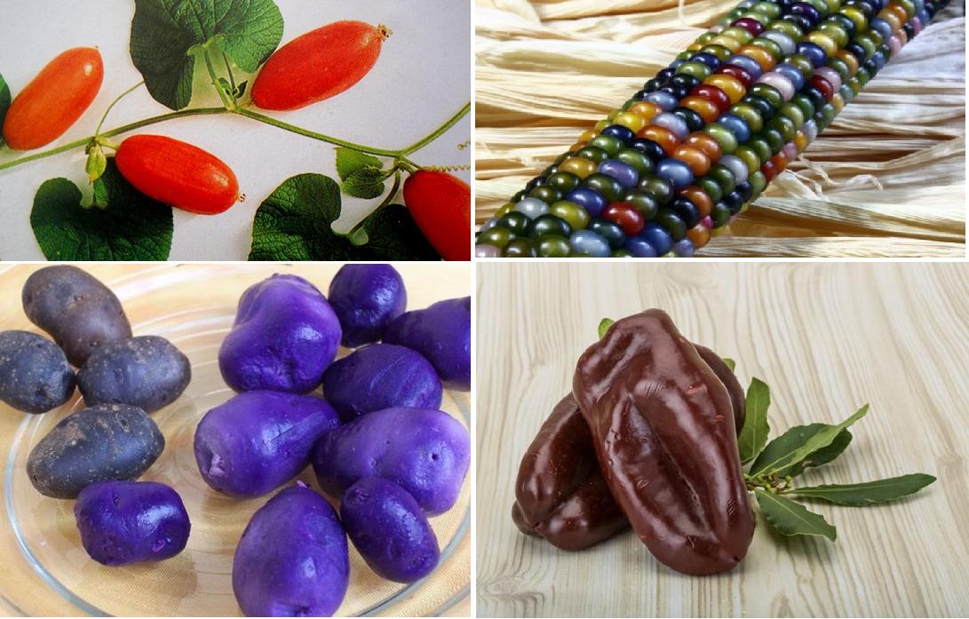Малознакомые овощи