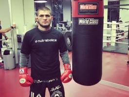 Лучший русский боец UFC Хабиб Нурмагомедов похвалил Антидопинговое агентство США