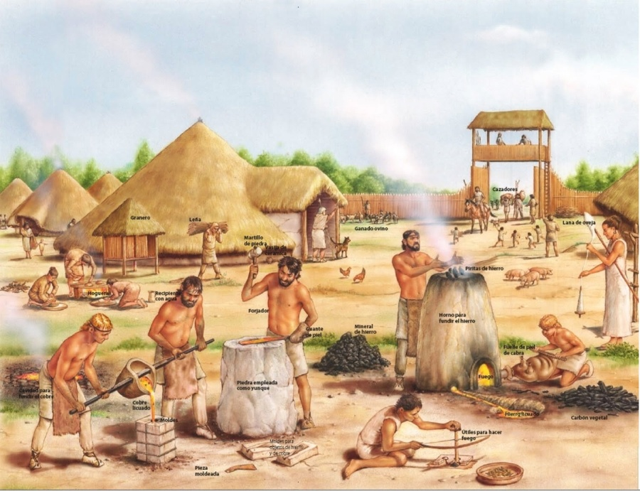 a history of neolithic revolution