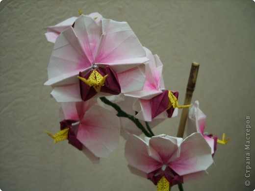 Мастер-класс Оригами Орхидея МК Бумага фото 81