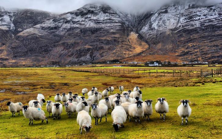 Невероятная Шотландия в разное время года