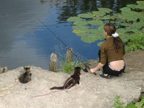 короткие видео о рыбалке