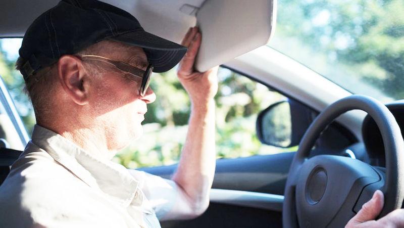 Есть здесь кто живой?! — исследователи оставили машины на жаре и ушли на полтора часа