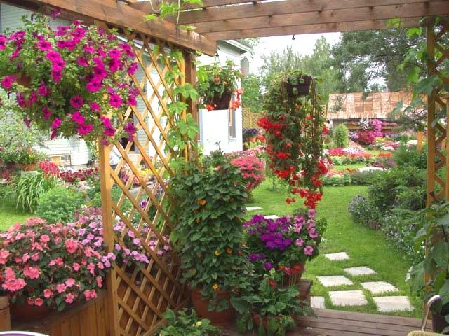 Изысканный декор беседки цветами – яркий элемент ландшафтного дизайна