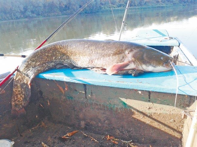 рыбалка гремяч