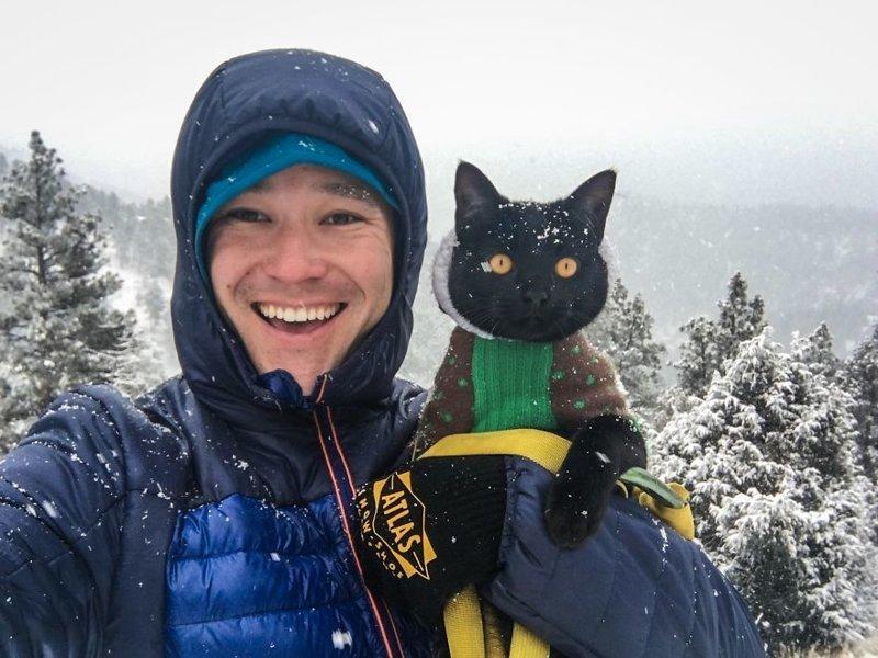 Знакомьтесь, этого кота зовут Саймон, и он уже в течение двух лет путешествует со своим хозяином