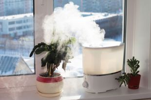 Как выбрать недорогой, эффективный увлажнитель воздуха?