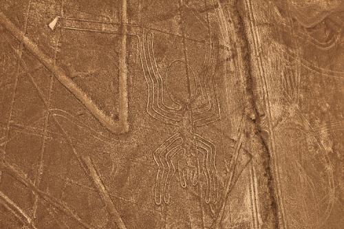 Линии и цифры, прослеживаемые на плато, составляют сложную последовательность рисунков, достигающих в длину нескольких километров, а разглядеть их можно лишь с воздуха. Линии Наска, паук