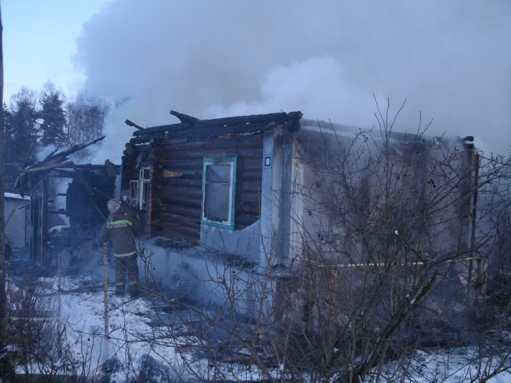 Пожар в д. Репино 14 января 2014 г.