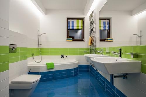 сочетание зеленого с синим в ванной