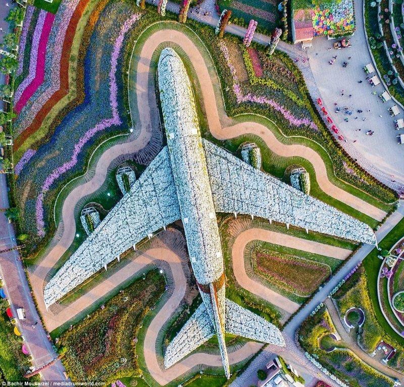 Сад чудес Dubai Miracle Garden, парк цветов в Дубае Дубай фото, аэросъемка, дрон, дубай, дубай достопримечательности, квадрокоптер, с высоты птичьего полета, снимки с дрона