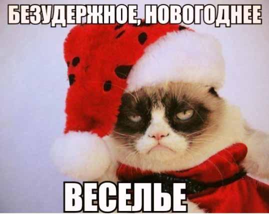 Безудержное новогоднее весел…