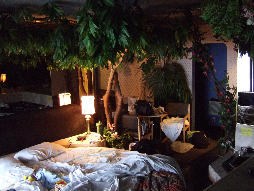 Растения в спальню - чтобы отдыхалось лучше