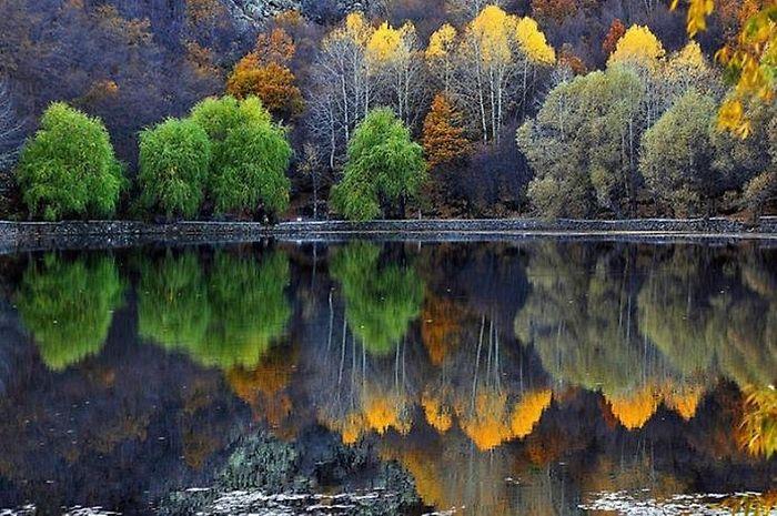 отражение в воде природа 15 (700x465, 361Kb)
