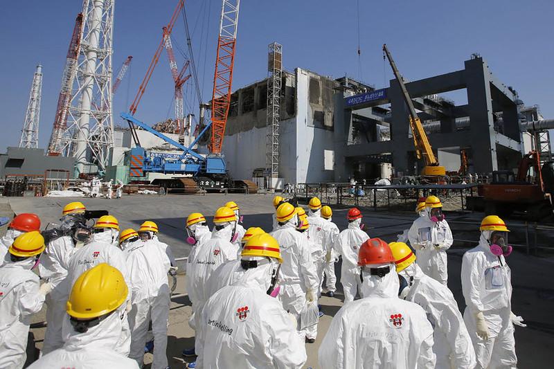 Мутации растений возле Фукусимы